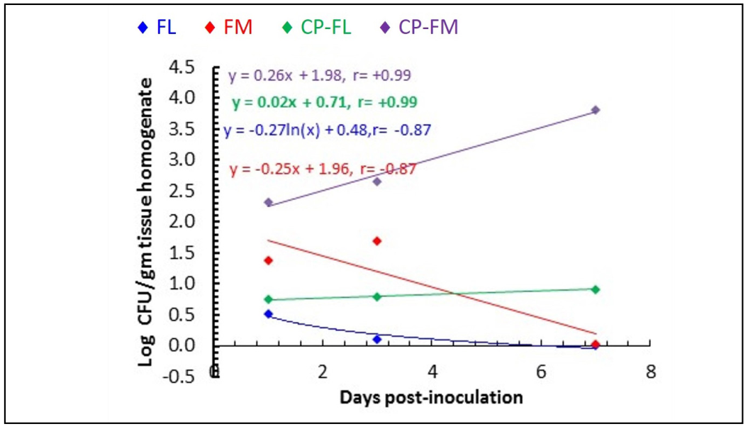The relationships of fungal load (log CFU/g pulmonary tissue) in experimental murine models of pulmonary aspergillosis (FL, FM, CP-FL and CP-FM) with times 1, 3, and 7 days post-inoculation.